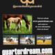 New 2017 QD Advertising!