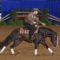 2019 NATIONAL REINING BREEDERS CLASSIC – April 14-21 2019 – Katy TX