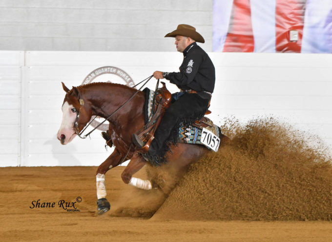 2019 All American Quarter Horse CONGRESS | 01-27/10/2019 | Columbus, OH (USA)